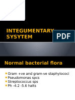 INTEGUMENTARY SYSYTEM.pptx