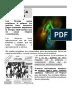 ,agnun.pdf