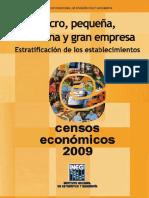 Micro pequeña  mediana y gran empresa.pdf