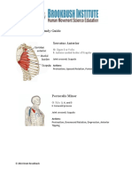 Quick Reference Muscles of the Scapula
