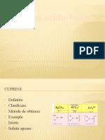 Amfoliti-acido-bazici