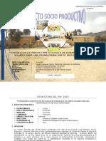 PROYECTO SOCIO PRODUCTIVO (ULTIMO).docx