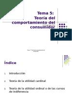 TEMA 5 Teoria Del Consumidor