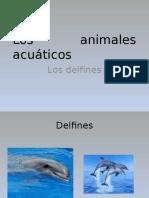 Los Animales Acuáticos Prueva