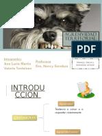 Agresividad Territorial Canina