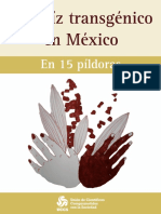El Maiz Transgenico en Mexico