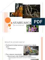 Ayahuasca - English