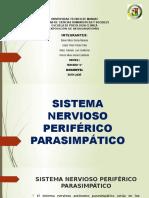Sistema Nervioso Periferico Parasimpático
