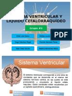 Sistema Ventricular - LCR