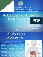Sistema Digestivo y Anexos