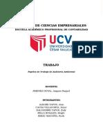 PAPELES-DE-TRABAJO-DE-AUDITORÍA-AMBIENTAL.docx