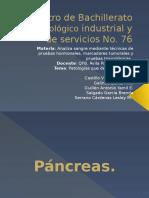 Ca-19-9-Patologías.