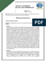 ARTÍCULOS Filo Proteobacteria