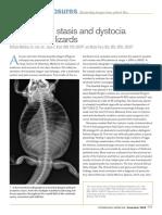 16-preovulatory-stasis-dystocia-in-oviparous-lizards.pdf