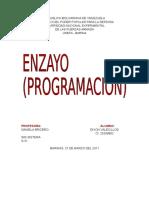 Programacion Ensayo