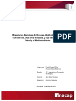 Informe Cetonas Aldehidos y Acidos Car