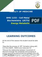 1BMS1153 BL1-Energy Metabolism