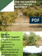 Nutricion aguacate - Mtnez.pptx