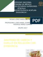 anatomaenexodoncia-140519215134-phpapp01