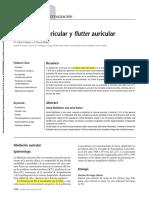 FA y flutter.pdf