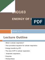 Lec 11,12 Energy of Life