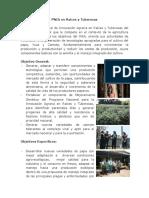 PNIA_Raices_Tuberosas(1).pdf