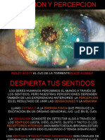 Sensacionypercepción (1)