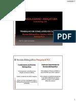 revisão_bibliográfica_citações_referências.pdf