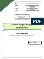 Fiche TD Algèbre Multilinéaire