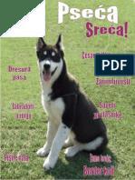 docslide.net_pseca-sreca-br1.pdf