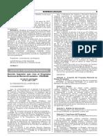 Decreto Supremo que crea el Programa Nacional de Bienes Incautados - PRONABI
