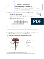 Teste plantas.pdf