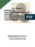 5. Reparacio_n (1)
