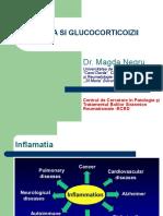 2. Inflamatia Si Glucocorticoizii