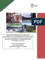percepciones-explotacion-carbon-cesar.pdf