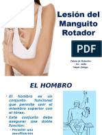Expo Lesion Manguito Rotador
