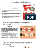Absorcion de Microminerales