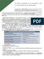 Tutoria 5 - Artite Séptica (2)