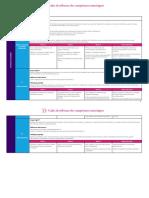 Cadre de Reference Des Competences Numeriques FRancais 5