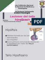 Lesiones de tallo.pptx