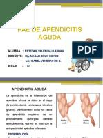 Apendicitis Aguda Pae