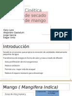 Cinetica de secaDO DE mangifera indica