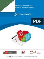 Manual Fiscalizacion
