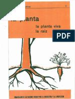 01_La planta.pdf