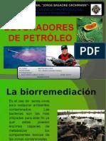 BIOTECNOLOGIA PSEUDOMONA