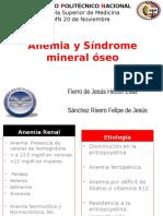 Anemia Renal