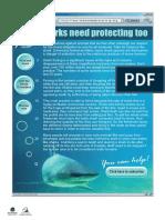 naplan lit sample protectsharks