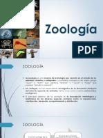 CAPÍTULO 3 ZOOLOGÍA PRIMERA PARTE.pdf