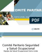 Salud Ocupacional - COMITE PARITARIO Noviembre 2016