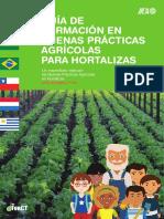 BUENAS PRACTICA HORTALIZAS.pdf